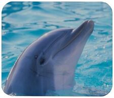 """DOLPHIN MOUSE PAD 1/4"""" NOVELTY MOUSEPAD"""