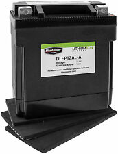 Lightweight Lithium Battery BikeMaster DLFP12AL-A for Motorcycle Applications