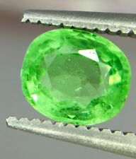 0.95ct Natural Untreated Rare Tsavorite Garnet Gemstone