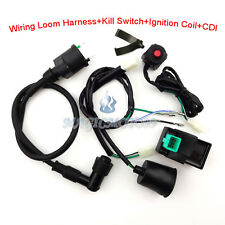 Ignition Coil Wiring Loom Harness Kill Switch AC CDI For SSR Thumpstar Dirt Bike