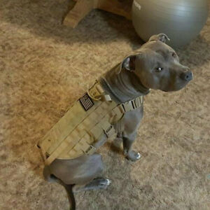 Tactical Outdoor Military Dog Clothes Load Bearing Training Vest Harness GN
