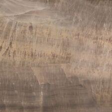 Delight beige 50x50cm Fliesen Feinsteinzeug Natursteinoptik Bodenfliese