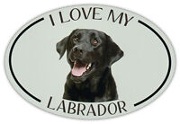 Oval Dog Breed Picture Car Magnet - I Love My Labrador (Black Lab) - Magnet