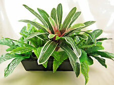 80cm Wide Artificial Silk Greenery Planter with Blushing Bromeliad Flower