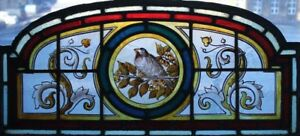 Beautiful Victorian Song Bird In Blossom Painted English Stained Glass Window