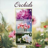 Montserrat Flowers Stamps 2019 MNH Orchids Moth Orchid Flora Nature 3v M/S