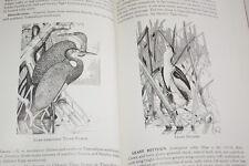 BIRDS OF MEXICO OISEAUX MEXIQUE REID BLAKE 1953 ILLUSTRE