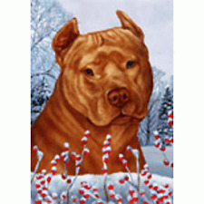 Winter House Flag - Orange American Pit Bull Terrier 15406
