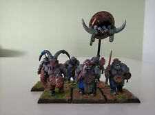 6 Ogre bulls / toros musician painted ogre kingdom age of sigmar Reino ogro