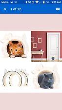 Indoor cat and pet door entryway