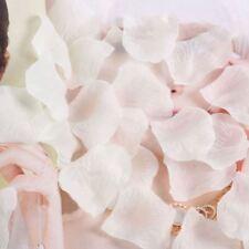 Pétalos blancos para bodas