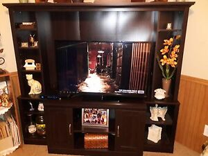 Entertainment Center With a 42 Inch TV and Hutch Very good Condition..