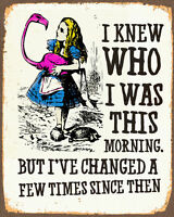 Alice In Wonderland i've changed - Rolled Canvas Poster - A1 A2 A3 A4 A5