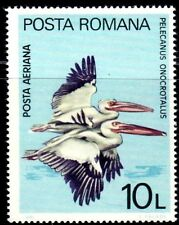 SELLOS AVES RUMANIA 1980  Prc.HB 141.