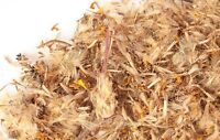 Arnica Flowers - (Heterotheca inuloides) FREE SHIPPING 1 oz to 1 lb