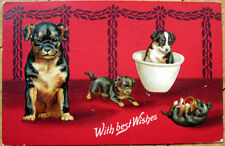 1910 Dog Postcard: Rottweiler Puppies - Embossed, Color Litho