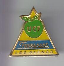 RARE PINS PIN'S .. TOURISME ILES BRETAGNE BREIZH UCF FOUESNANT GLENANS 29 ~DJ