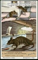 House Mouse And Brown Rat 60+ Y/O Trade Ad Card