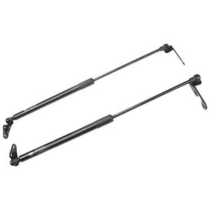 Hatch Gas Stay Support Struts suits Toyota Echo NCP10 NCP13 Hatchback 1999~2005