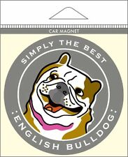 English Bulldog Car Magnet 4×4″