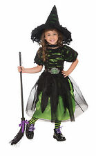 Toddler Mysteria Witch Costume Green Witch Dress Spooky Halloween Size 2-4