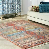 nuLOOM Transitional Vintage Flatweave Yetta Area Rug in Multi