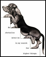 BASSET HOUND CLIMBING UP THE STAIRS LOVELY COMIC DOG ART PRINT POSTER