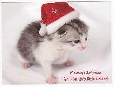 Postcard Teeny Kitten is Santa's Little Helper for Christmas