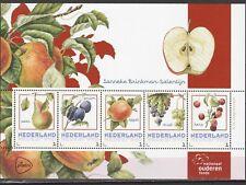 3012 Nederland 2017 Map met 4 velletjes van 5 Janneke Brinkman - Fruit