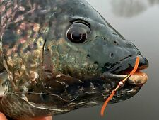 Fly Fishing Flies (Bream, Catfish, Trout, Carp) Depth Charge Brown Worm (6)