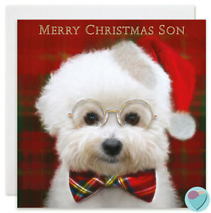 Son Christmas Card MERRY CHRISTMAS SON to from Bichon Frise dog lover