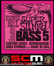 5 STRING BASS GUITAR STRINGS 2824 ERNIE BALL SUPER SLINKY ROUNDWOUND 40-125