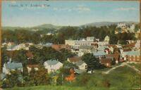 1910 NY Postcard: 'Bird's Eye View - Liberty, New York'