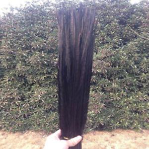 Wholesale 10-100pcs high quality natural pheasant feather 10-24inch/25-60cm DIY