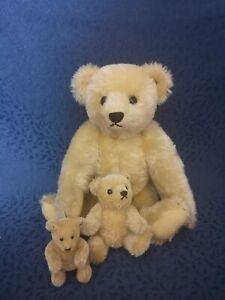 Alte Steiff Teddy  Bären Familie