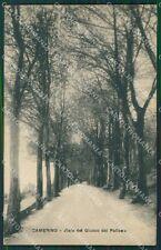 Macerata Camerino cartolina QK6488