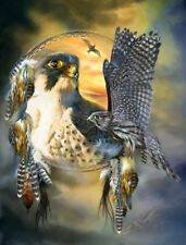 Native American Dream Catcher Flight Of The Falcon 8.5x11 Matte Art (Read Below)