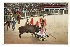 Saving The Picador Bull Fighting Photo Postcard c1920's