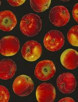 Food Fabric - Tossed Apple Harvest Black CM5210 - Timeless Treasures YARD