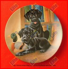 """Its a Dogs Life """"Literary Labs"""" Collectors Plate by Knowles"""