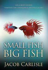 Small Fish Big Fish : A Coming-Of-age Novel by Carlisle, Jacob