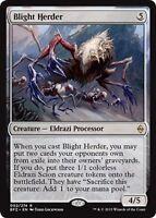 2x Drover de la Doom - Blight Herder MAGIC BFZ Batalla _Zendikar_ E / le
