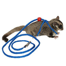 Glider Harness & Leash - Safety Leash for Sugar Gliders and Small Pets