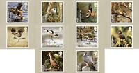 GB 2007  PHQ Cards Mint Set~Birds~(10)~PHQ-302~UK Seller
