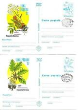 ROMANIA 1997 MAXI CARD FLOWERS FOREST FRUITE