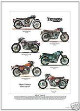 TRIUMPH ciclos del motor Lámina Artística A3 Tamaño - Thunderbird Bonneville