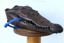 GENUINE CROCODILE SKULL TAXIDERMY UNIQUE EXOTIC ORNAMENT BROWN SKIN DECOR 16044