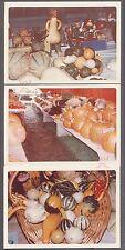Lot of 3 Unusual Vintage Photos Pumpkins & Squash at Gourd Harvest Show 733900