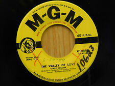 Clare Nelson 4