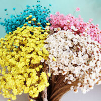30 Pcs Dried Flower Mini Daisies Floral Bouquet Wedding Party DIY Home Decor